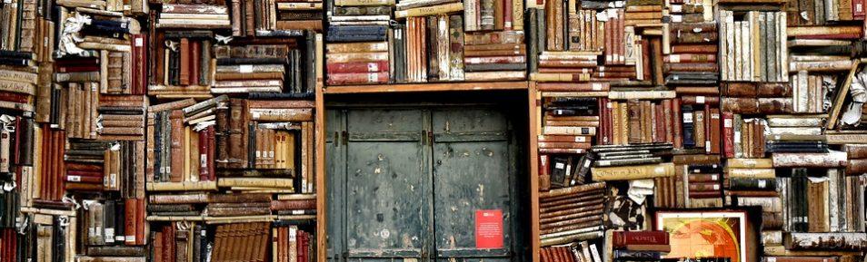 Jak i gdzie przechowywać książki?